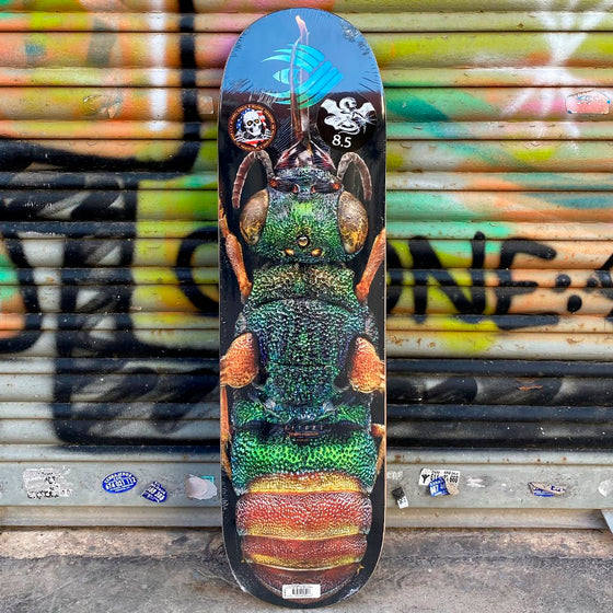 Powell Peralta Biss Flight 8.5 x 32.08 Ruby Tayled Skateboard Deck- Tabla Tablas Powell Peralta