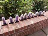 Amethyst Geodes on Wooden Stand
