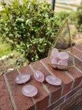 Jelly Rose Quartz Palm Stones