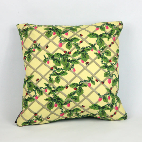 Ladybird Trellis Cushion