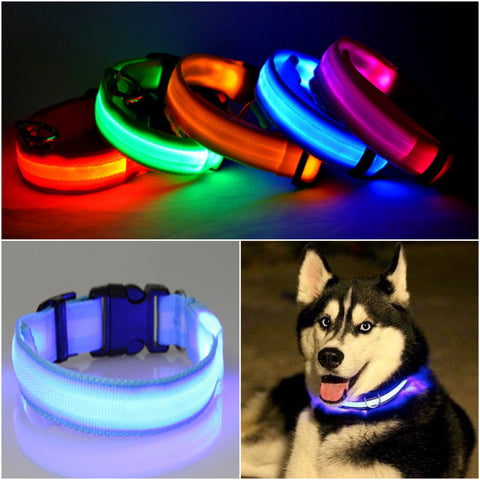 FREE LED Dog Collar - Just Pay Shipping!