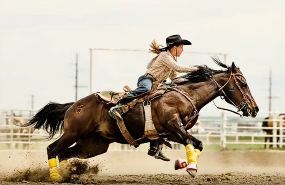 Barrel Racing - Things you need to know