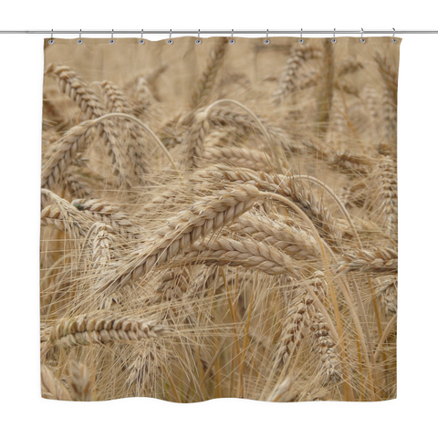 Field of Wheat - Shower Curtain