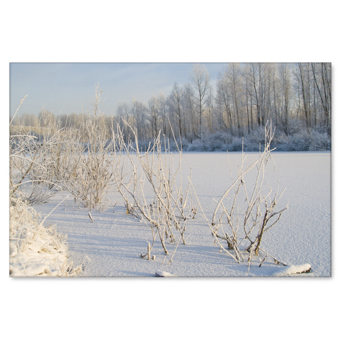 Frosted Lake Canvas Art Print