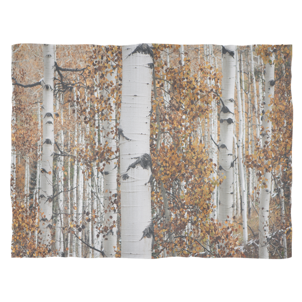 "Apen Grove in Autumn - Fleece Blankets Sofa Throw Large: 80""x60"""