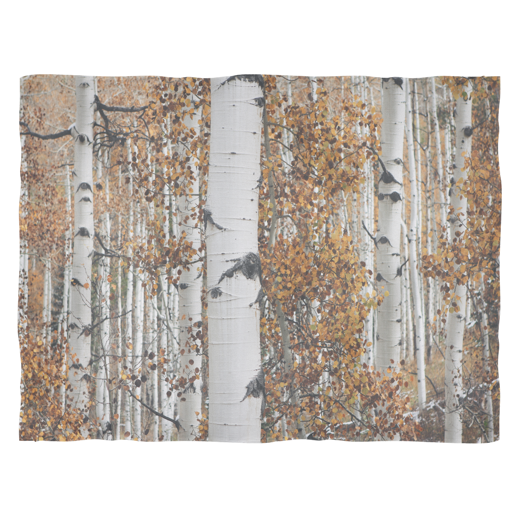 "Apen Grove in Autumn - Fleece Blankets Sofa Throw Small: 40"" x 30"""