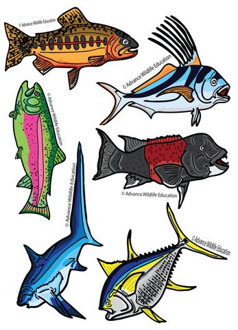 Sticker Sheet Fish