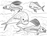 .Wildlife Educational Coloring Book (Fish of the Pacific)