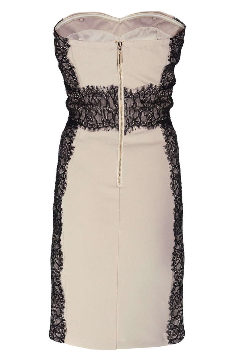 LUCY PARIS MISA Beige Strapless Lace Mini Dress