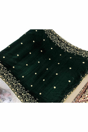 Designs by Amina - Dark Green Velvet Shawl