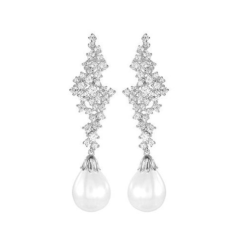 Amishi - Silver Elegant Drop Earrings