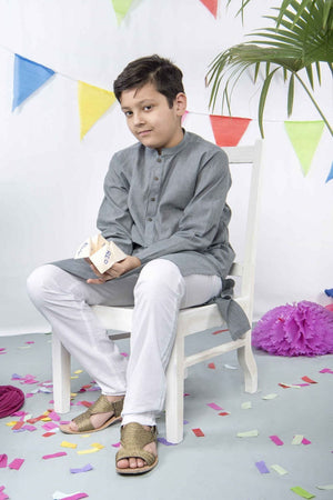 Hummingbirds - Mink Grey Kurta