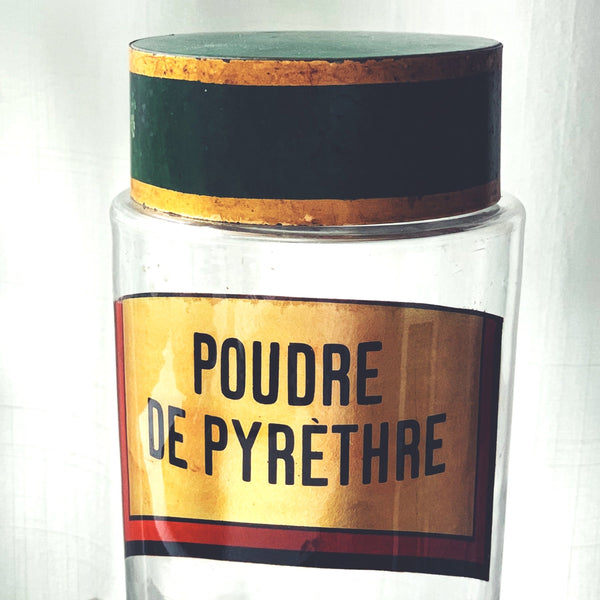 Antique French Pharmacy Bottles