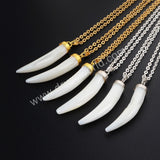 Gold Cap Or Silver Cap Canine Teeth Natural White Shell Pendant
