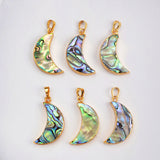 Abalone Shell Pendant Jewelry Making Gold Plated G0460