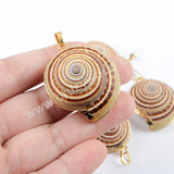 Boho Chic Gold Plated Natural Snail Sea Shell Pendant For Beach Holiday Jewelry G1666