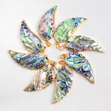 Gold Plated Abalone Shell Carved Wing Pendant Bead G0474