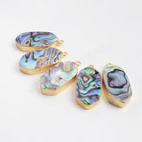 Gold Plated Natural Shield Abalone Shell Charm G0861
