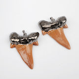 Shark Teeth Gold Plated Brown Resin Pendant Bead S1333/G1333/B1333