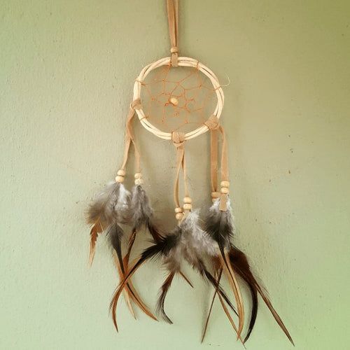 Tiny Traditional Dreamcatcher-Pure People