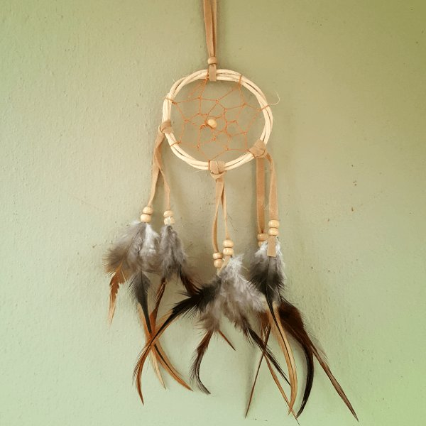 Tiny Traditional Dreamcatcher - Pure People