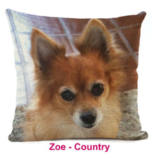 Pomeranian Dream Collection Pillow Covers Offer