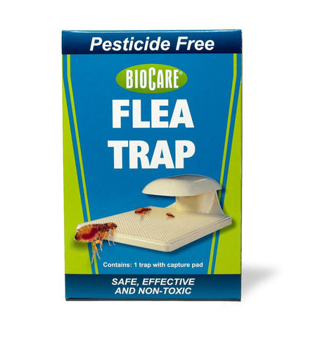 BioCare<sup>®</sup> Flea Trap