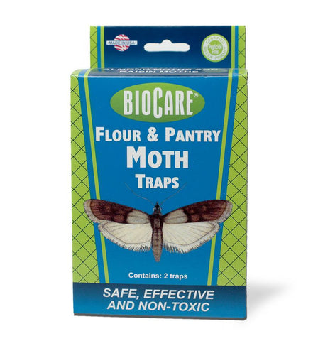 Flour Moth Trap - Front of box