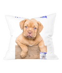 Throw Cushion Mine's a Dog de Bordeaux - The Dog Demands, [product_dog accessories]