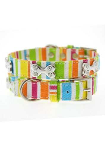 Striped Neon Canvas Diamante Bone Collar – Multicolour - The Dog Demands, [product_dog accessories]