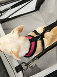 Car Seat Dog Cradle – Grey/Black - The Dog Demands, [product_dog accessories]