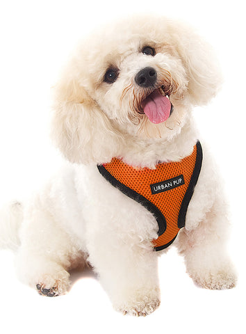 Burnt Orange Soft Harness - The Dog Demands, [product_dog accessories]