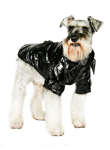 Kensington Waterproof Trench Coat – Black - The Dog Demands, [product_dog accessories]