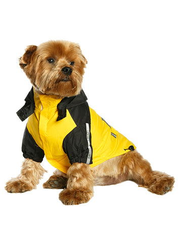 Trailfinder Windbreaker Jacket – Yellow and Black - The Dog Demands, [product_dog accessories]