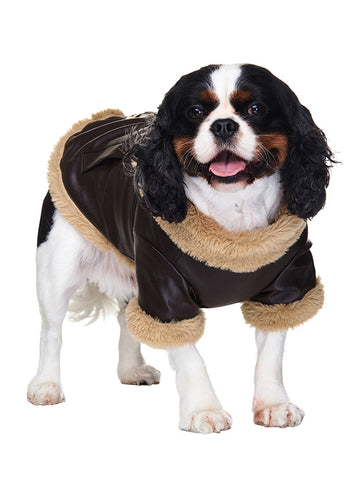 Brown Leather Flying Jacket - The Dog Demands, [product_dog accessories]
