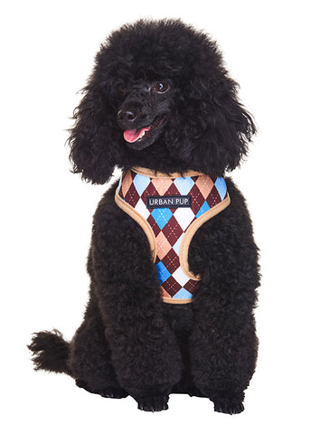 Brown & Blue Argyle Harness - The Dog Demands, [product_dog accessories]