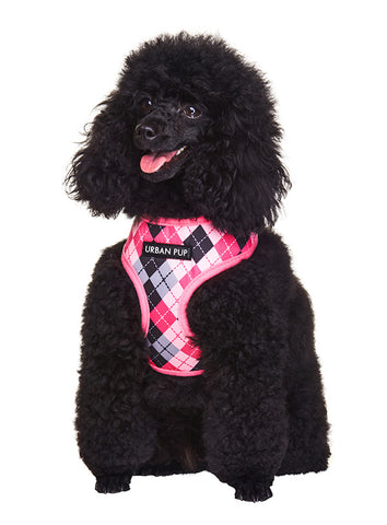 Pink Argyle Harness - The Dog Demands, [product_dog accessories]