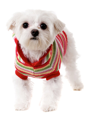 Rainbow Sweater with Hood - The Dog Demands, [product_dog accessories]