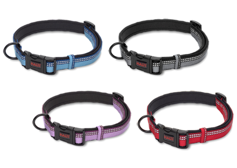 HALTI Collar - The Dog Demands, [product_dog accessories]
