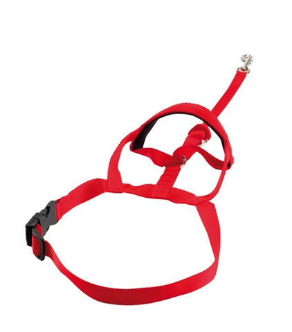 Halti Headcollar Red - The Dog Demands, [product_dog accessories]