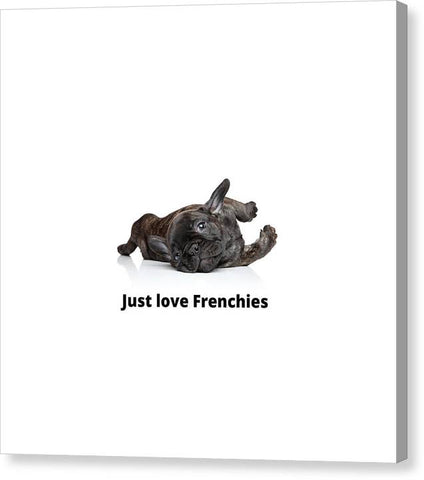 Just love Frenchies - Canvas Print