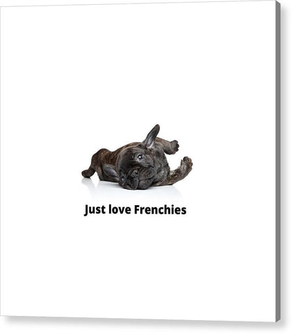 Just love Frenchies - Acrylic Print