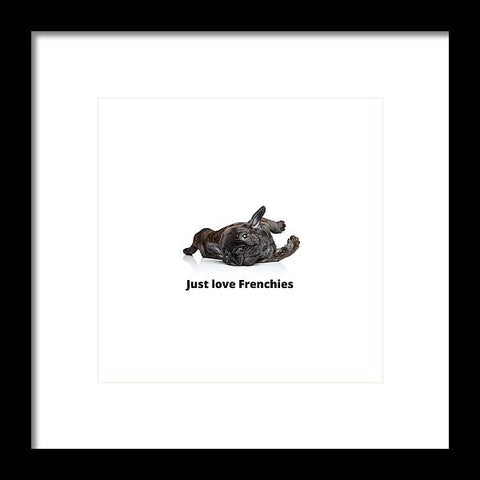 Just love Frenchies - Framed Print