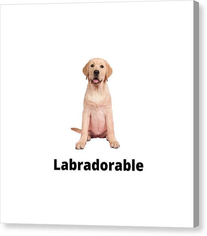 Labradorable - Canvas Print