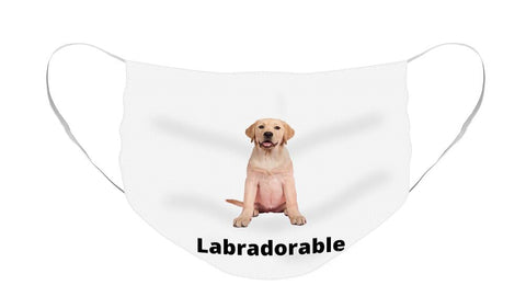 Labradorable - Face Mask