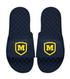 M-Shield Slides