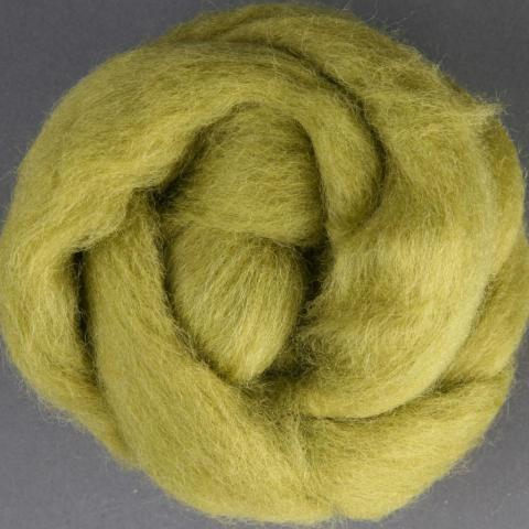 Bean Sprout | Corriedale Top | Ashford | Fly in the Fibre | Creston BC