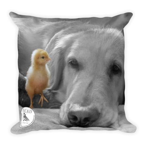 Jazmine's Chick Pillow
