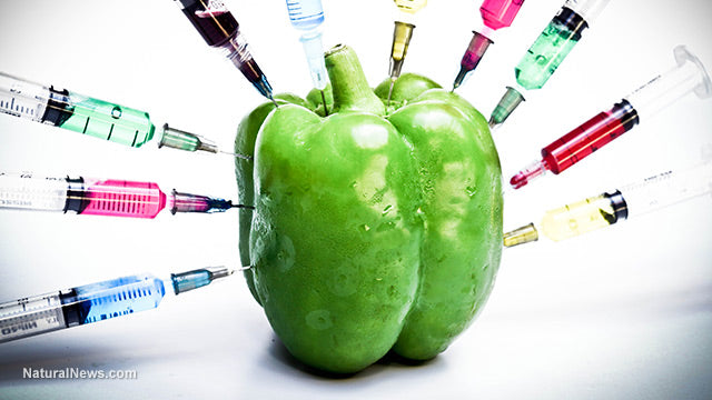 gene modified food is a bad Credit: gmo, genetically modified food, gmo foods  leaders and scientists who  support gmos and those who believe gmos are harmful.