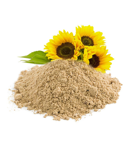 Cold-pressed sunflower lecithin for brain health